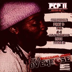 BRICCGANG JAMES – PCP2